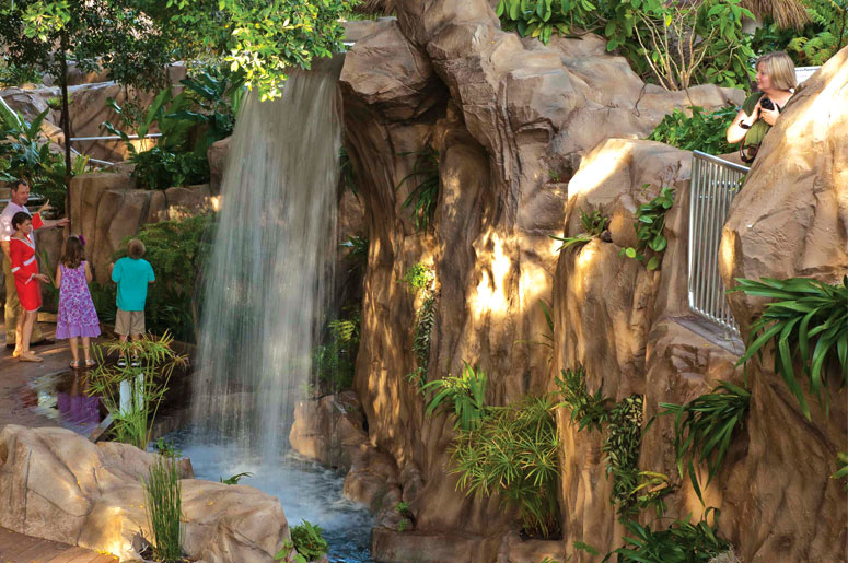 http://s8503.pcdn.co/wp-content/uploads/Rainforest-garden-waterfall.jpg